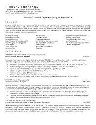 Marketing Resume Headline Fill Blank Resume Analysis Essay Sample Best Admission Essay