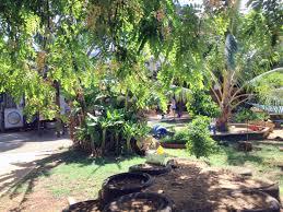 Backyard View Big Playground U2013 University Of Hawai U0027i At Mānoa Children U0027s Center