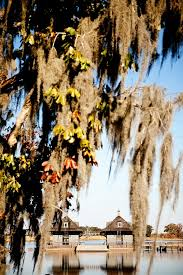 Way Down In The Hole Blind Alabama 49 Best Jackson County Alabama History And Sites Images On