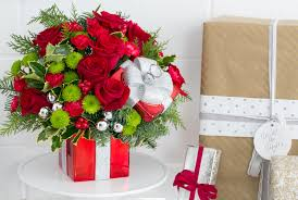 christmas flowers meaning of different christmas flowers