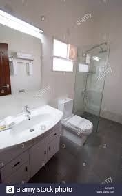 ultra modern bathroom suite toilet sink and shower in luxury