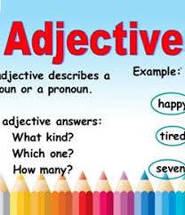 spanish gender adjective agreement proprofs quiz