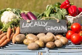 cherry point farm market chautauqua county jamestown ny and wny farms and markets
