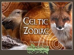 november birth animal celtic zodiac signs u0026 astrology celtic animal zodiac meanings