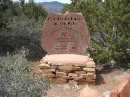 utah native plants children u0027s forest at the kiln utah maps u0026 photos for hiking