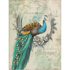 Peacock Decorations For Home Yosemite Home Decor Yfsparrowl Peacock Poise I Animal Portrait