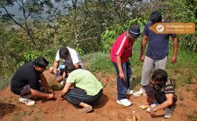 eco activities in sydney sydney mudumalai eco adventure for teams thrillophilia