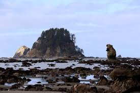 Elwha Dam Rv Park Reviews by Your Guide To The 15 Campgrounds Of Olympic National Park The