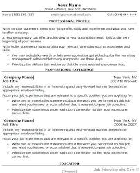 Resume Professional Summary Example by Cv Professional Summary