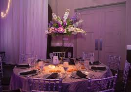 succulents u0026 delphinium professional pictures rosie u0027s floral design