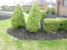 low maintenance garden ideas diy the garden inspirations
