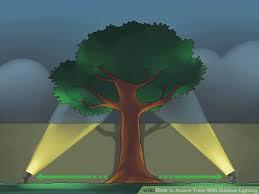 tree spotlights