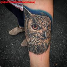 owl tattoos design ideas for and