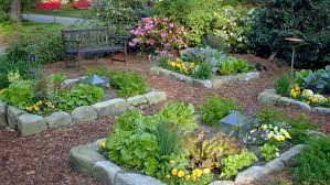 Backyard Landscape Design Ideas Outdoor Best Landscape Designers Best Backyard Landscape Designs