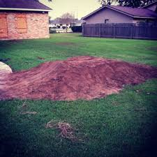 Backyard Bmx Dirt Jumps So I Bulit Some Dirt Jumps General Bmx Talk Bmx Forums