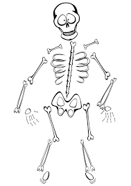 skeleton coloring pages printable coloringstar