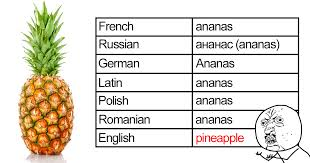 Ananas Pineapple Meme - 10 hilarious reasons why the english language is the worst bored