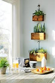hanging herb garden ideas for your home window apartments and