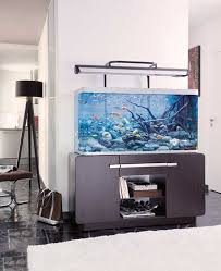 Aquarium Decor Ideas Minimalist Aquarium Decor Ideas