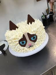 Excellent Ideas Cat Birthday Cake Classy Design Best 25 Cakes