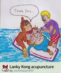 Acupuncture Meme - lanky kong acupuncture that s enough internet for today know