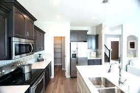 walk in kitchen pantry ideas storage kitchen pantries ideas randy design kitchen pantry