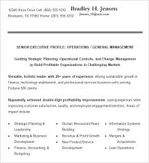 Cio Resume Examples by 10 Executive Resume Templates U2013 Free Samples Examples U0026 Formats