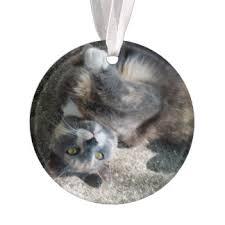 tortoiseshell cat ornaments keepsake ornaments zazzle
