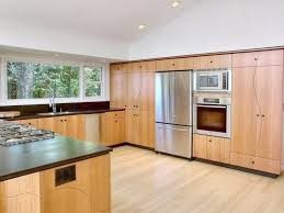 Bamboo Cabinets Kitchen Kitchen Exceptional Bamboo Cabinets Pros And Cons Kitchen