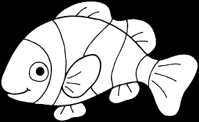 clownfish clipart black and white pencil and in color clownfish