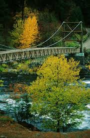 Lincoln Park Seattle Parks Hikes by Best 25 Washington State Parks Ideas On Pinterest Washington