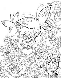 print butterfly coloring pages adults 49 gallery