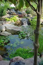 backyard ponds water garden to create relaxing garden home