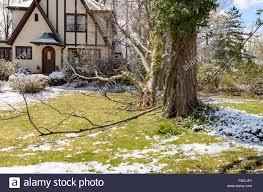 chappaqua n y chappaqua ny 3 april 2016 usa weather an april snowstorm stock