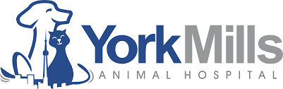 Terms Of Use Terms Of Use U2013 York Mills Animal Hospital