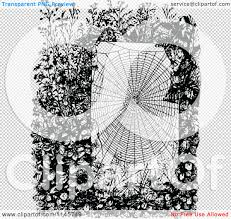 halloween spider webbing transparent background clipart of a retro vintage black and white spider web in a garden