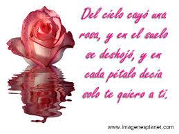 imagenes de amor con rosas animadas gif animados de rosas con frases de amor imágenes de amor con