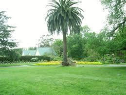 Williamstown Botanic Gardens Wedding Location In Australia Williamstown Botanic Gardens