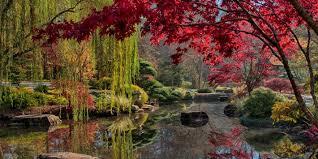Atlanta Botanical Garden Atlanta Ga Check Out These Metro Atlanta Botanical Gardens This Fall 90 1