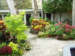 roll out flower garden roll out flower garden seed mats outdoor waco easy and