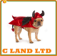 costumes dog clothing pet halloween lobster clothes costume buy