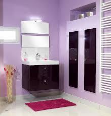 cuisine bi couleur cuisine cuisine aubergine et gris unique salle de bain aubergine et