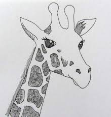 line drawing of a giraffe by clare willcocks my sketchbook