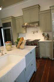 Green Kitchen Sink by Double Kitchen Sinks Transitional Kitchen Urban Grace Interiors