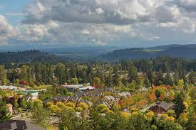 Valley Oregon Homes In Happy Valley Oregon During Fall Season Photograph By David Gn