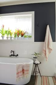 bathroom design wonderful succulents for bathroom bathroom