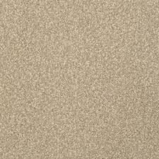 kercheval plus by stainmaster from flooring america master