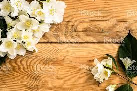 Flowers On - flowers on wood background stock photo 495691080 istock