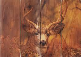 Cedar Wood Walls by Amazon Com Gizaun Art Perfect Look Inside Outside Wall Art Full
