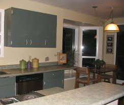 Painting Thermofoil Kitchen Cabinets Kitchen Room Design The Most White Thermofoil Kitchen Cabinets